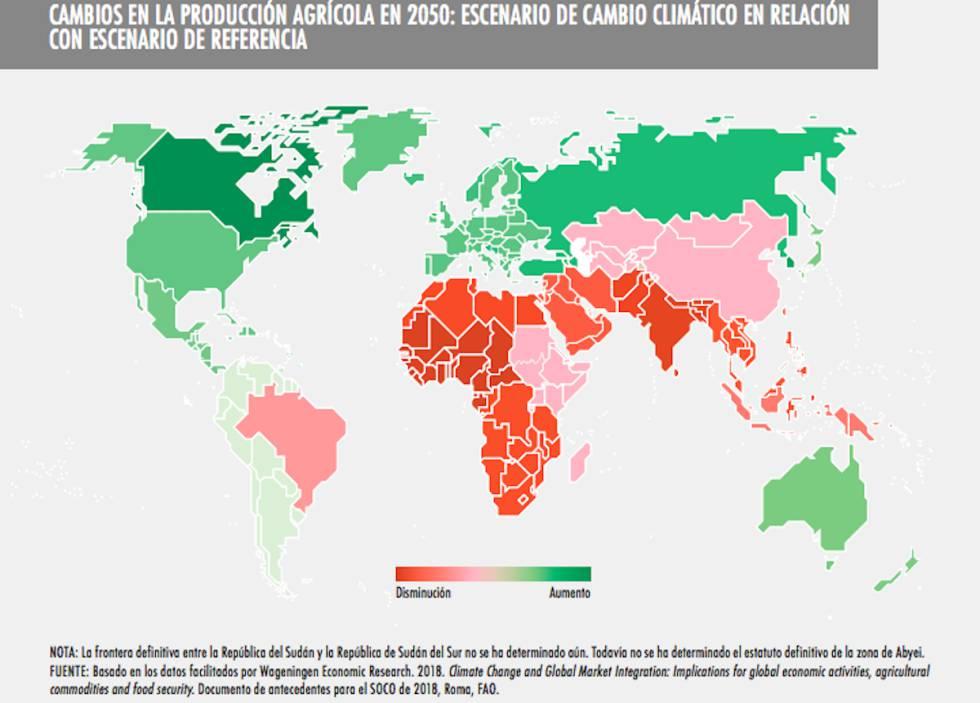 La previsión es que la producción agrícola se incremente en el hemisferio norte y las hambrunas se agraven en África y Asia.
