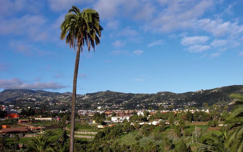 Vista de Santa Brígida