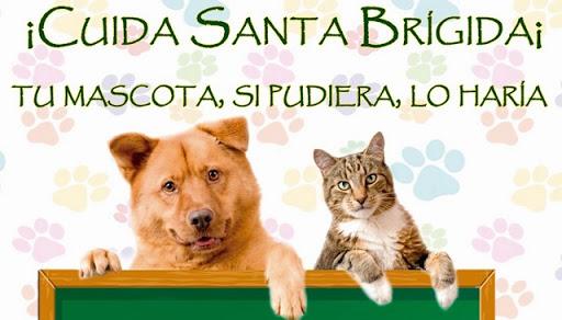 Cartel de campaña de cuidado de mascotas realizadas en el anterior mandato
